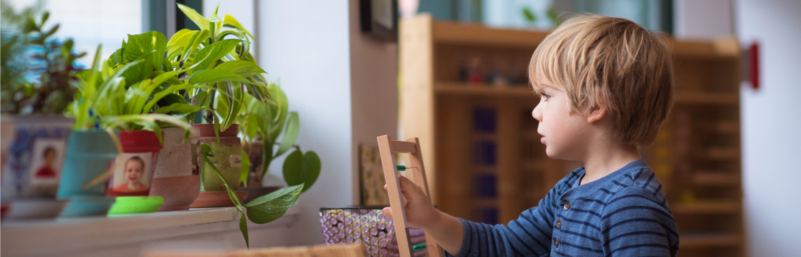 boy looking at growing plants on window sill